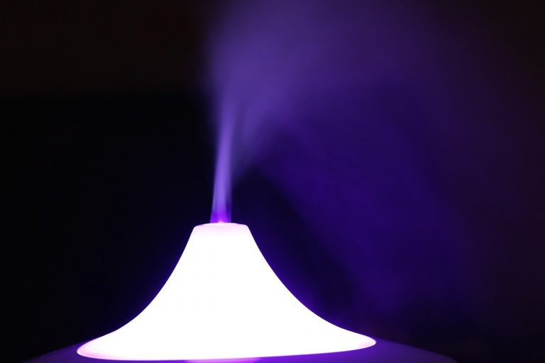 Diffuser vs. Humidifier Which One Is Right For You