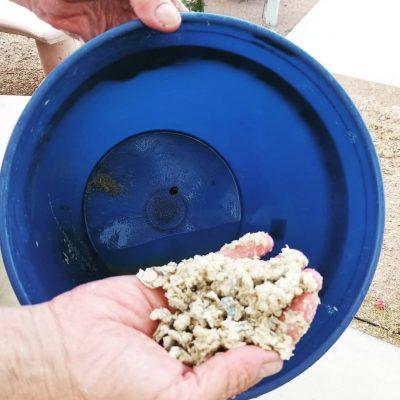 Cleans Out Sediment